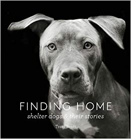Finding Home: Shelter Dogs and Their Stories Hardcover Coffee Table Book