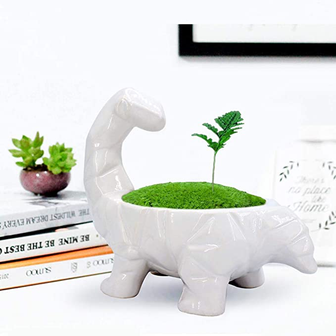 Dinosaur Unique Planter
