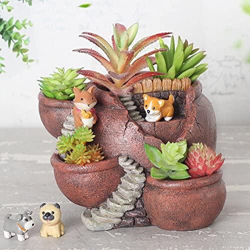 Creative & Cute Plants Pot