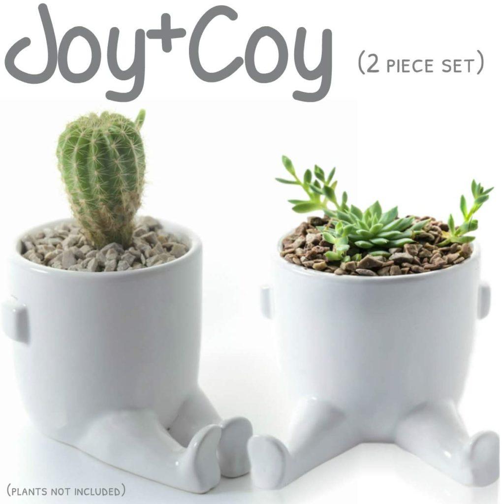 Succulent Planter Pots with Legs