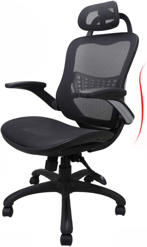 Ergousit Ergomonic Chair for Sciatica
