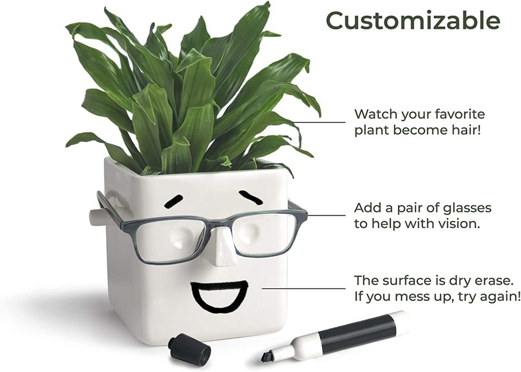 Face with glasses planter pot