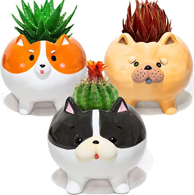 Cute Round Dog Small Planter pot